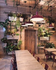 Gorgeous Restaurant's Green and Natural Interior Design. Natural interior design applied in this one of the walls of this restaurant is decorated with unique and eye-catching lined plant pots.