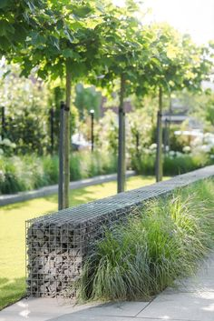Plant and flower combinations that work well together for creating pretty gardens at front yard Modern Landscape Design, Landscape Plans, Garden Landscape Design, Modern Landscaping, Front Yard Landscaping, Landscape Architecture, Garden Beds, Home And Garden, Garden Planning