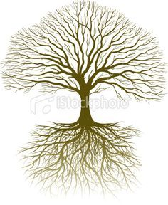 oak tree drawing with roots - Google Search More