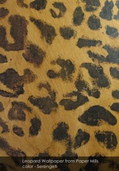 Leopard Wallpaper from Paper Mills - Patternsnap blog 'Queen Kate's House Tour' involving patternsnap's fake peek into Kate Moss's home.