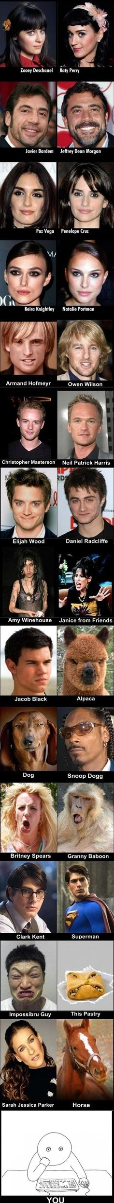 Celebrity lookalikes….