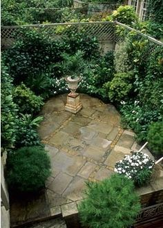 Small urban garden viewed from above with metal urn - Eaton Terrace, London