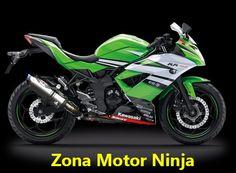 Ninja RR Mono KRT BEET Performance