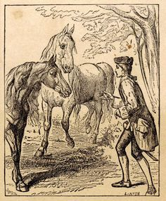 a research on the houyhnhnms in gullivers travels by jonathan swift Get everything you need to know about the houyhnhnms in gulliver's travels analysis, related quotes, timeline  gulliver's travels by jonathan swift upgrade to a .