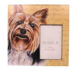 Animal Yorkshire Terrier Frame Frame