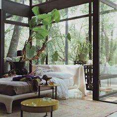 verglaste Veranda-Haus Raumpflanzen