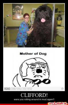 Obviously that's Mrs. O'Leary, not Clifford. Silly mortals. <- Previous pinner. Amazing.