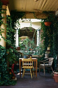 Porch with lots of vines