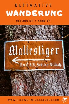 """Der Mallestiger Mittagskogel (slow. Maloško poldne) liegt in den Karawanken an der österreichisch-slowenischen Grenze. Wir haben die anspruchsvolle Tour mit leichtem Klettersteig für euch getestet! Außerdem verraten wir, was ein """"Zwölf-Uhr-Zeigeberg"""" ist. German, Happiness, Happy, Travel, Europe Travel Tips, Road Trip Destinations, Deutsch, German Language, Bonheur"""