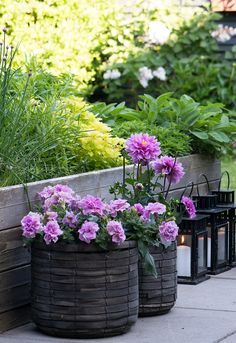 Planter, Tips, Inspiration, Gardens, Patio, Lawn And Garden, Biblical Inspiration, Inspirational, Inhalation