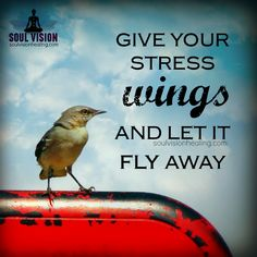 How done with #stress are you?  We are told so often that it's time to let our wings take flight, well how about we give stress wings to take flight and move the hell out of the way.  #letgo #be #justbe #wings #liveinthemoment #bepresent #fly #meditation #yoga #positive #positivevibes #RebeccaFox #empath #quote 