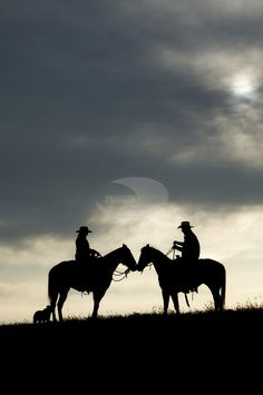 cowgirl and cowboy romance photo session on horses