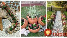 Záhradník ukázal úžasné nápady, ako pestovať kvety v záhrade: Vyskúšajte to a budú sa pri nej všetci s úžasom pristavovať! Succulents, Gardening, Flowers, Plants, Beautiful, Lawn And Garden, Succulent Plants, Plant, Royal Icing Flowers