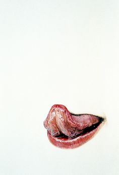 Lick Line #35  by Julia Randall