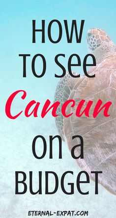 """The ultimate guide to seeing the """"real"""" cancun - away from the all inclusive resorts, eating with the locals, and not spending a fortune!"""