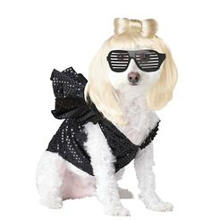 A great costume for Lady Gaga Fans, The Lady Dogga Halloween Costume includes the wig, glasses and ruffled dress. Check out the Lady Dogga Pet Costume today! Great Halloween Costumes, Pet Costumes, Halloween Fancy Dress, Animal Costumes, Costume Ideas, Halloween Ideas, Spirit Halloween, Happy Halloween, Puppy Costume