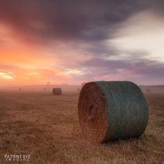 Sunrise this morning in rural Warrnambool in Southwest Victoria  #photooftheday #bestoftheday #instadaily #igers #picoftheday #igdaily #visit12apostles #liveinviwrlpctoria #visitwarrnambool #destinationwarrnambool #visitmelbourne #greatoceanroad #jpI knthpe #h #visitgreatoceanroad #exploringaustralia #olhic  #nature #amazing_australia #igsuper_shotz  #sunrise @australia by mrperrycho