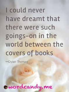 I could never have dreamt that there were such goings-on in the world between the covers of books