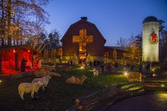 Christmas at the Billy Graham Library. Live nativity scene / horse drawn carriage rides.