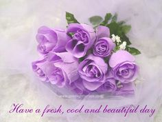 Rosas en lila