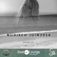 NuDisco Indie Dance Vol1 by Chris on SoundCloud