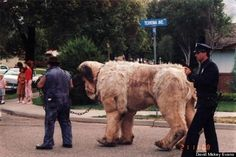 The Beast from The Sandlot-- 34 Behind The Scenes Photos That Will Change The Way You Look At Classic Movies