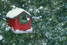 Red barn birdhouse d