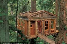 Temple of the Blue Moon. This charming treetop cottage is designed by Pete Nelson and built by Treehouse Point in Issaquah, Washington. Nelson created this sustainable tree house as an educational getaway that provides visitors to connect with nature. Cool Tree Houses, Amazing Houses, Tree House Designs, In The Tree, Big Tree, Cabins In The Woods, Play Houses, Dream Houses, Cubby Houses