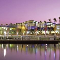AQUARIUM OF THE PACIFIC in long beach - We went here on THANKSGIVING had an amazing time