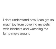 i don't understand how i can get so much joy from covering my pets with blankets and watching the lump move around