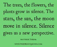 Trees, flowers and plants. Mother Teresa quote