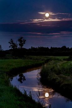 Moonlight and Night Sea View Beautiful Moon, Beautiful World, Beautiful Images, Moon Pictures, Nature Pictures, Moon Photography, Landscape Photography, Photography Tips, Wedding Photography