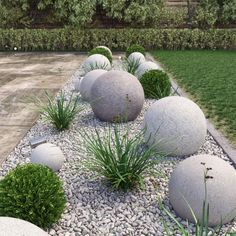 landscape balls plants max