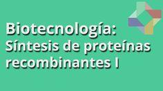 Síntesis de proteínas recombinantes I - Biotecnología - Educatina