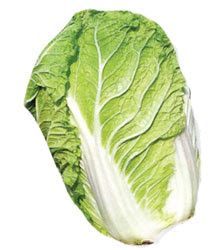A long ruffled edge cabbage used in Asian cooking. Napa (Chinese) cabbage is excellent for stir-fries and well as salads and noodle dishes. Napa Cabbage Salad, Savoy Cabbage, Corn Beef And Cabbage, Green Cabbage, Cabbage Seeds, Detox Salad, Salad Dishes, Feel Good Food, Caraway Seeds