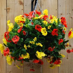 A flowering hanging basket of pansies would appeal to Isabel & Alma.