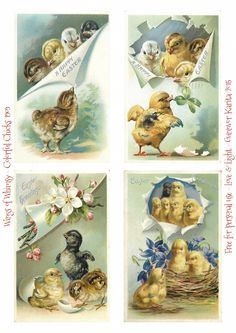 Wings of Whimsy ~ 1909 Easter Chicks Postcards Collage Sheet *Click on photo for DIY Easter decor tutorial and printables
