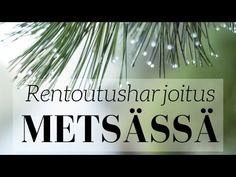 Rentoutusharjoitus telttaretkellä sateisessa metsässä | Mielikuvitusmatka - YouTube Sensory Activities, Sensory Play, Meditation, Relax, Mindfulness, Youtube, Keep Calm, Youtubers, Youtube Movies