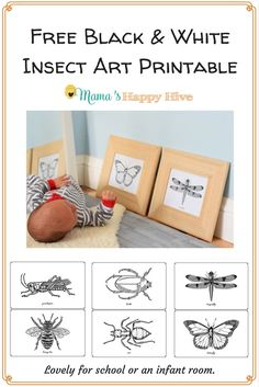 Black and white insect printables for infants