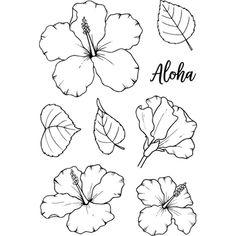 Loving these gorgeous Jane's Doodles Hibiscus flowers! Hibiscus Flower Drawing, Hibiscus Flower Tattoos, Plumeria Tattoo, Blue Lotus Flower, Hibiscus Plant, Floral Drawing, Hibiscus Flowers, Flower Art, Hawaii Flowers Drawing