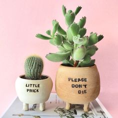 This little duo makes me smile 😄🌵Thank you for these beautiful handmade ceramic planters 💕 . Types Of Succulents, Cacti And Succulents, Planting Succulents, Cactus Plants, Planting Flowers, Succulents Wallpaper, Succulents Drawing, Propagating Succulents, Succulent Gifts