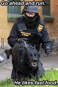 K9 police dog likes fast food