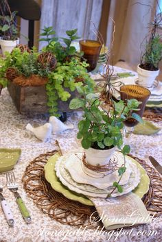 variety of green plants for centerpiece