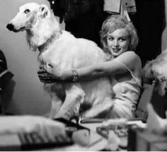 Marilyn Monroe with the dog from Avedon shoot