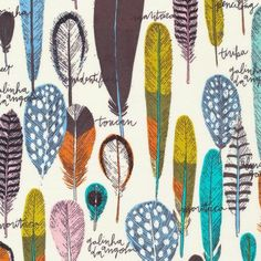 Bird's Eye View - Birds of A Feather