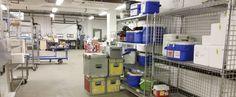 #Des patients auraient refait des tests mal conservés - Le Journal de Montréal: Le Journal de Montréal Des patients auraient refait des…