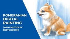 Pomeranian dog digital painting with Autodesk SketchBook Pomeranian dog digital painting (with Autodesk SketchBook) Source by tHe_mOoDy_aRtIsT The post Pomeranian dog digital painting (with Autodesk SketchBook) appeared first on Elwood Kennels. Step By Step Painting, Pomeranian, Corgi, Digital, Illustration, Artist, Animals, Dibujo, Corgis