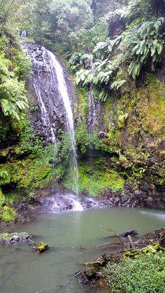 Ambre parc national du Mont est connue pour sa diversité biologique, des cascades et des lacs. Il s'agit clairement d'un autre affichage de la vie valent le détour.