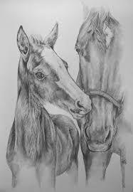 Uitgelezene 25 beste afbeeldingen van paarden tekeningen - Paard tekeningen BY-34