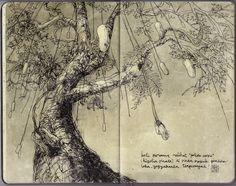 Gembiraloka Sausage Tree -   Eunike Nugroho  - sketch / journal